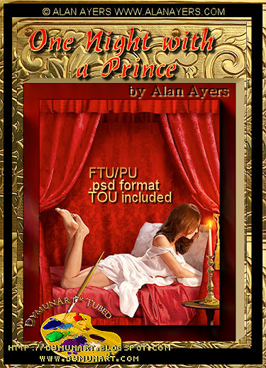 One Night With A Prince by Alan Ayers